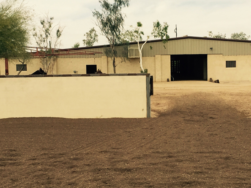 Santolina Farm Inc., - Back of Barn
